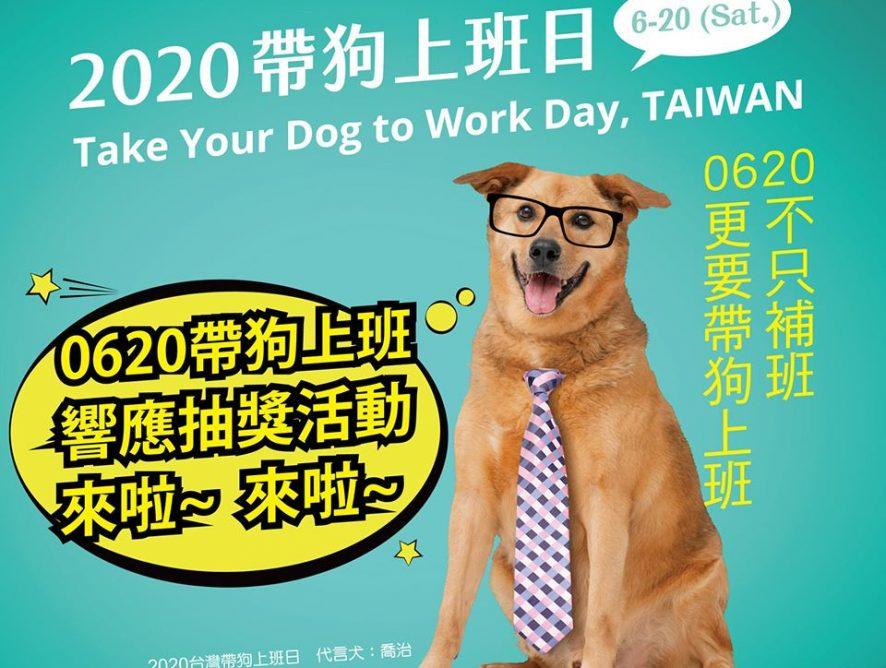STORY365 響應 挺挺動物 2020台灣帶狗上班日活動
