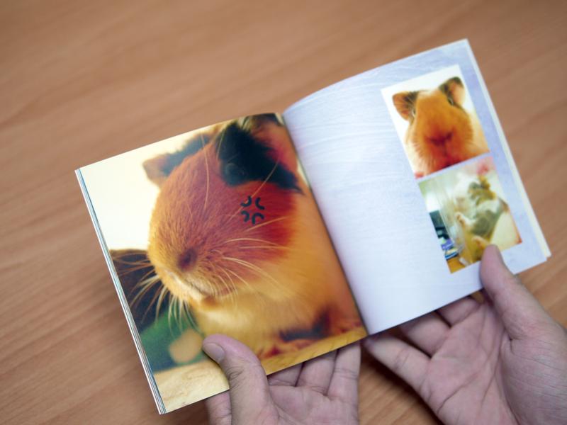 Small photobook.